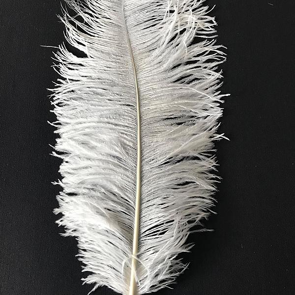 """Ostrich Feather - White - 24"""""""