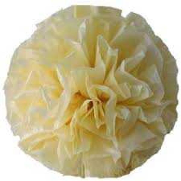Plastic Pom Poms - Ivory