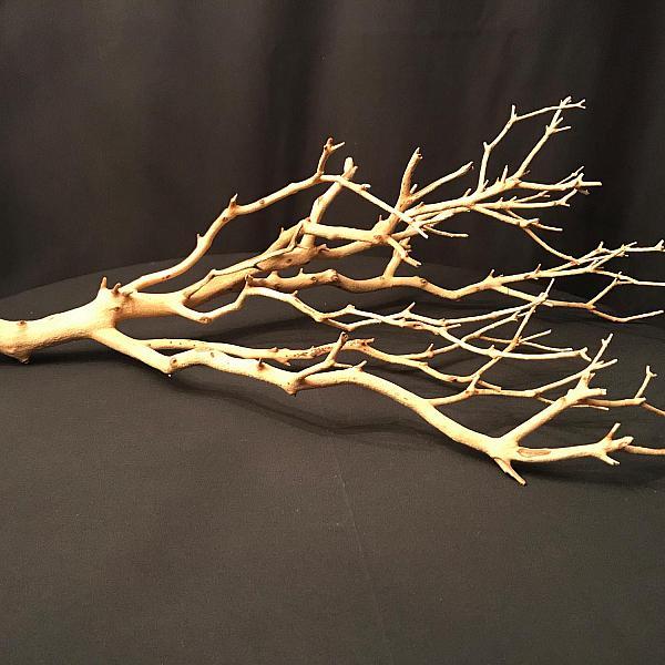"Manzanita Branch - 24"" - 36"""