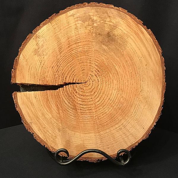 "Cedar Wood Round - 14"" - 16"""