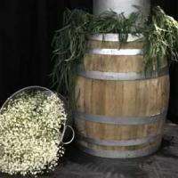 Oak Barrel - Small