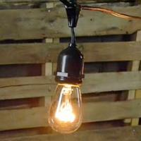 String Lights - Edison Bulbs - LED 48'