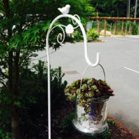Shepherd Hook - White - 6'