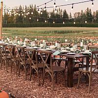 Table - Farm Style 4' x 8' Wood
