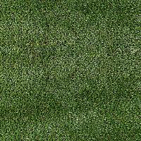 Grass Shag Rug