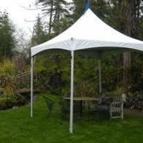 10'x10' Marquee Tent